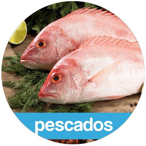 pescados-aracaju